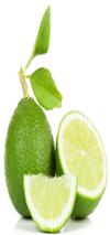 Frozen Lime Juice 100%