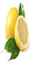 Frozen Lemon Juice 100%