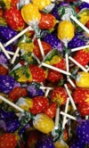 Swizzel Fruity Lollipops