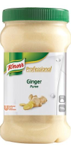 Knorr Ginger Herb Puree